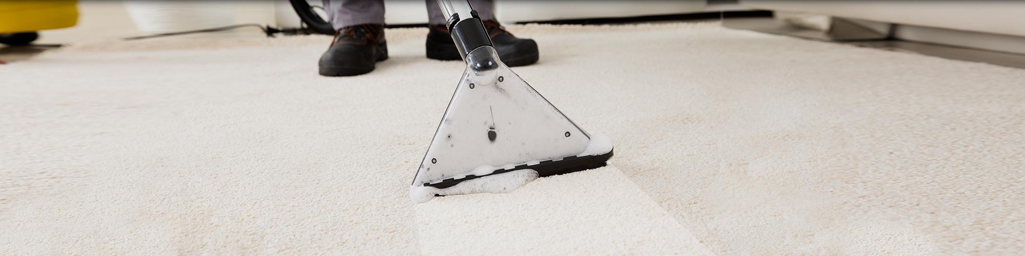 Carpet Cleaner Brunswick Georgia Www Resnooze Com